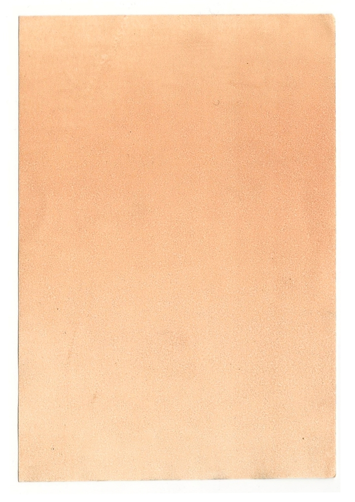 Giulia Carioti rosa1