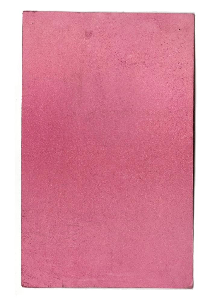 Giulia Carioti rosa13