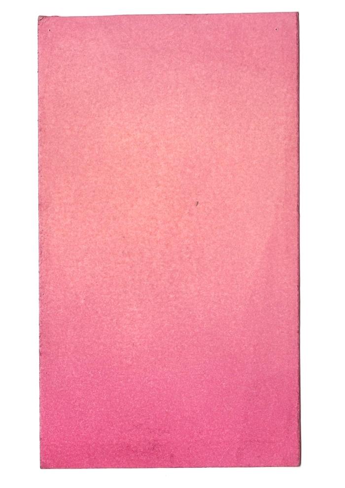 Giulia Carioti rosa7